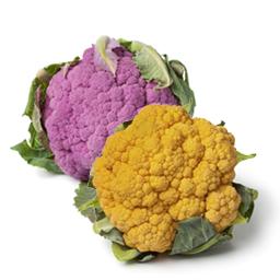 Farbiger Blumenkohl