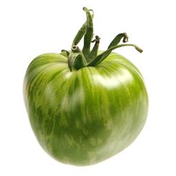 Green Zebra Tomate