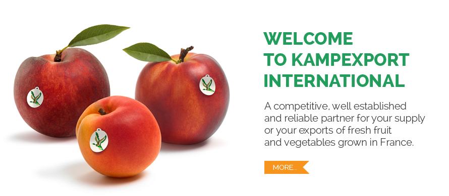 Welcome to Kampexport International Souh