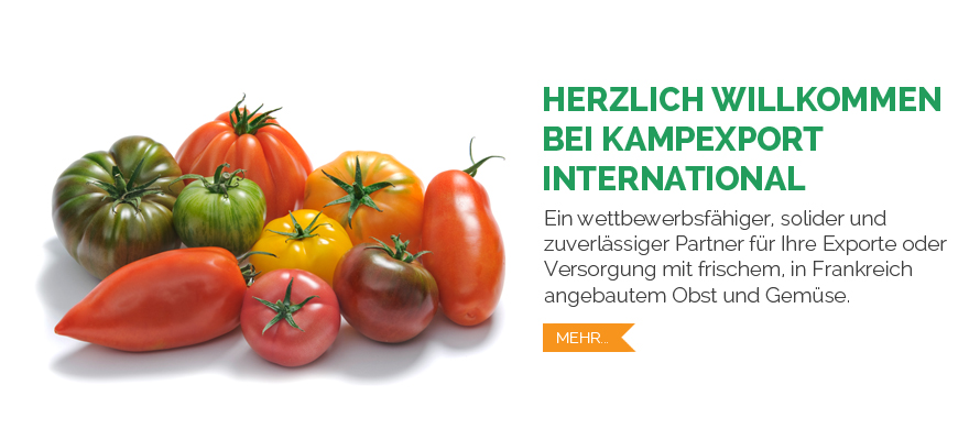 Kampexport International Tomates